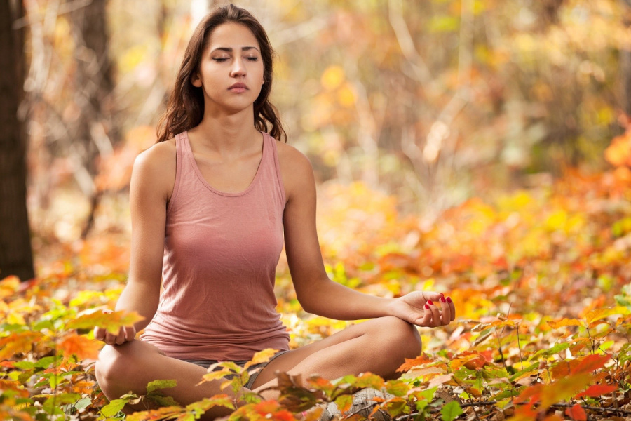 L'Autunno dello Yogi